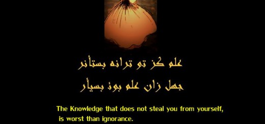 Knowledge and Ignorance - Rumi Quote