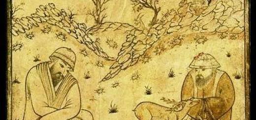 Sufi resting under Tree
