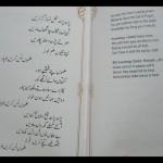 Bulleh Shah- Ilmo Bas Karein o Yaar 2