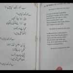 Bulleh Shah - Sab Iko Rang Kapahain Daa