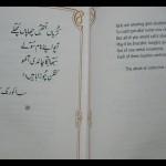 Bulleh Shah - Sab Iko Rang Kapahain Daa 2