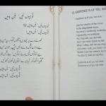 Bulleh Shah Tohiyon Hain Main Nahin