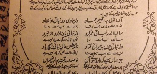 Rumi on Evolution